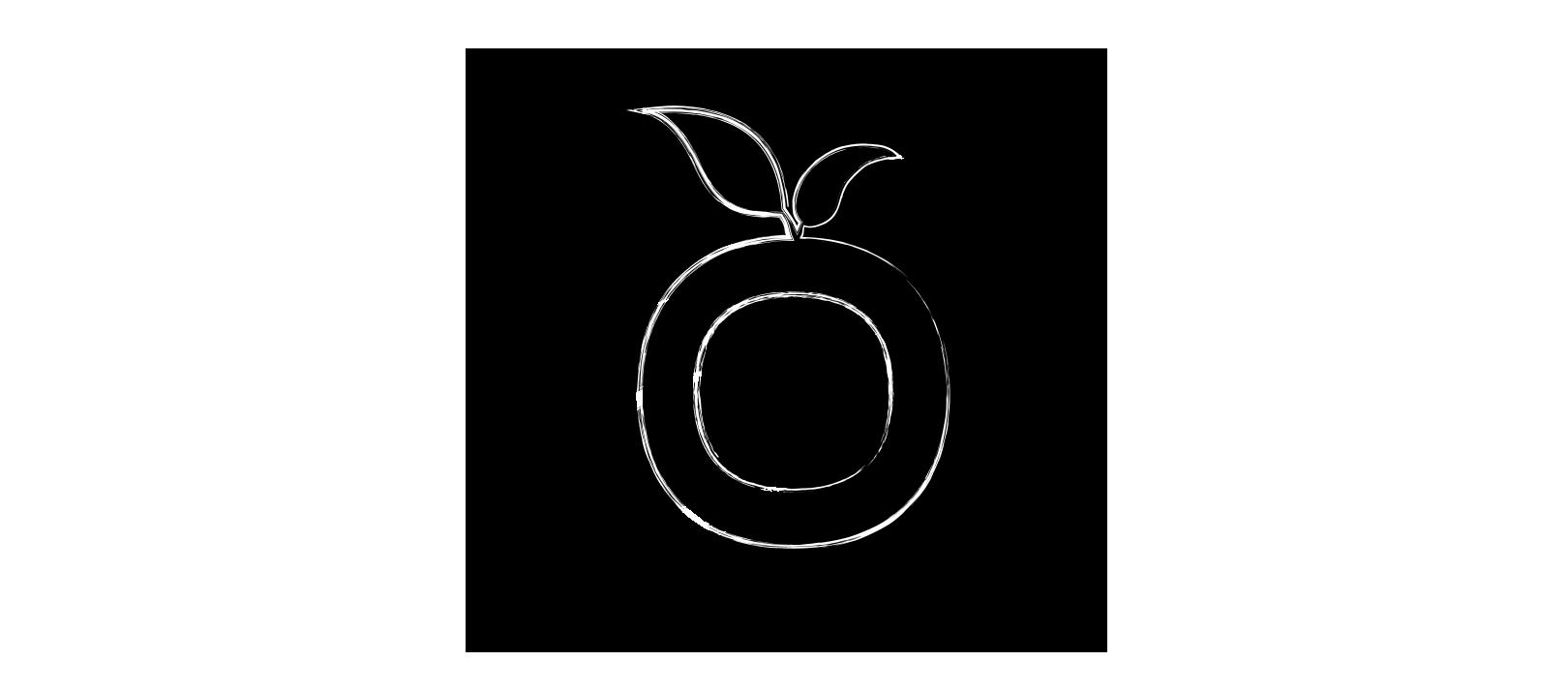 schizzo logo